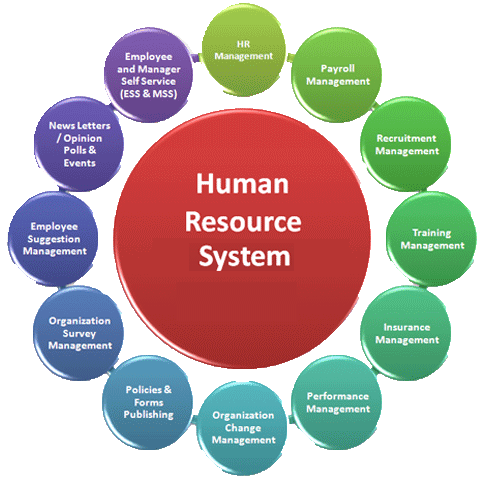 hrm from the content and process Pm world journal project human resource management for project managers vol iv, issue viii this is the first process in this knowledge area which comes under the planning process group human resource management plan (includes information on how resources should be.